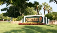 small-suntree-4